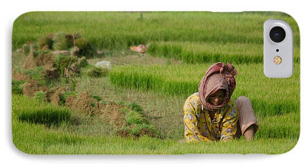 IPhone Case featuring the photograph Rice Field Worker Harvests Rice In Green Field In Southeast Asia by Jason Rosette