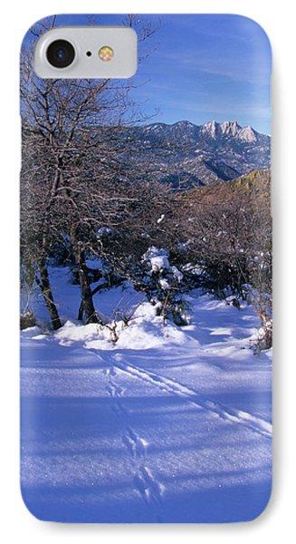 Rincon Trail - Sequoia IPhone Case