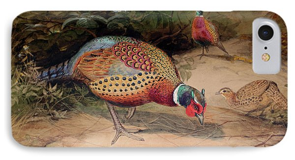 Ring Necked Pheasant IPhone Case