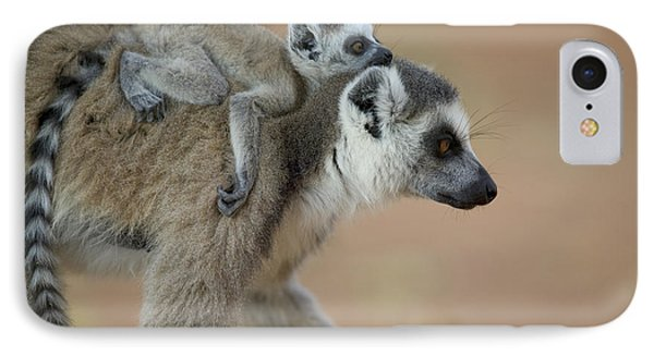Ring-tailed Lemur Mom And Baby Phone Case by Cyril Ruoso
