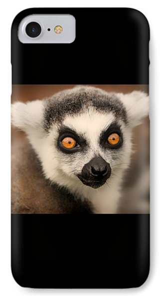 IPhone Case featuring the photograph Ring Tailed Lemur Portrait by Chris Boulton