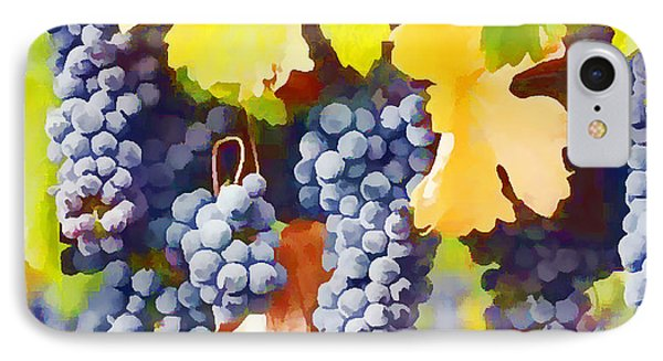 Ripe Wine Grapes Ready For Harvest IPhone Case