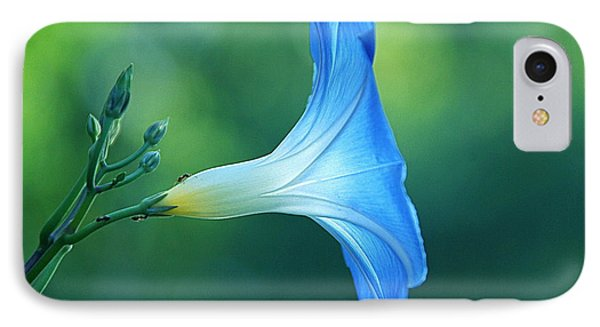 IPhone Case featuring the photograph Rise And Shine by Byron Varvarigos