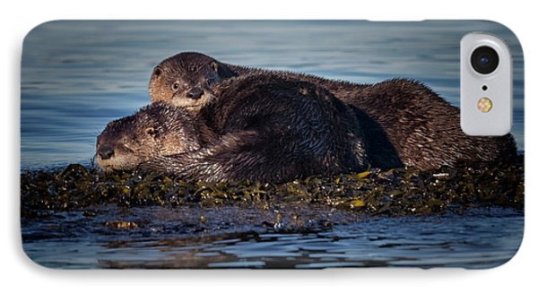 River Otters IPhone Case by Randy Hall