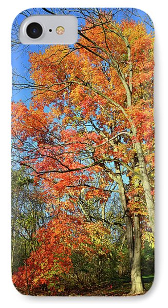 IPhone Case featuring the photograph River Road Maples by Ray Mathis