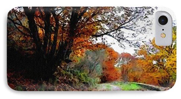 Road Through An Autumn Forest H B IPhone Case