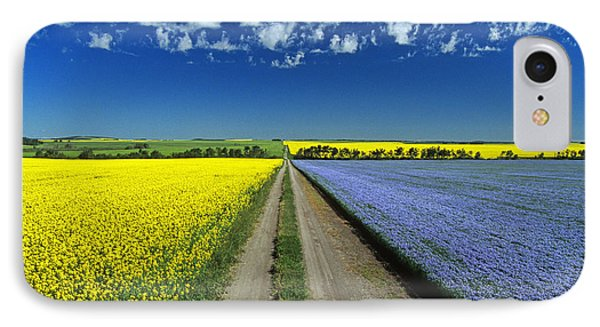 Road Through Flowering Flax And Canola IPhone Case