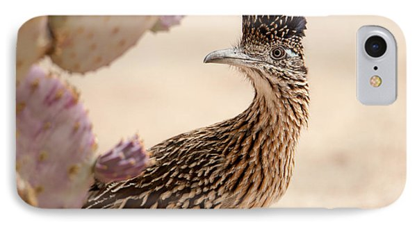 IPhone Case featuring the photograph Roadrunner by Dan McManus