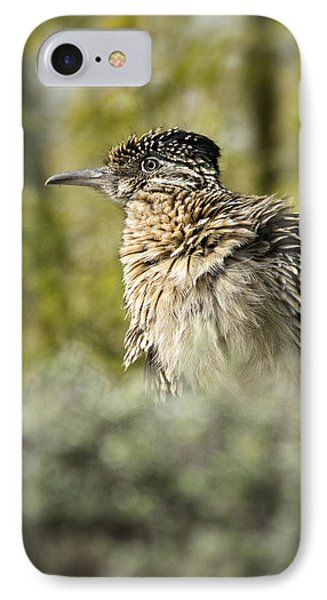 Roadrunner On Guard  IPhone 7 Case by Saija  Lehtonen