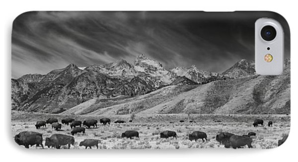 Roaming Bison In Black And White IPhone Case by Mark Kiver