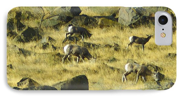 IPhone Case featuring the photograph Roaming Free by Dale Stillman