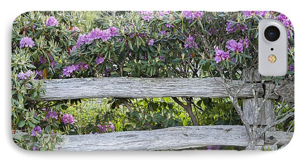 Roan Mountain Azaleas IPhone Case by Tyson and Kathy Smith