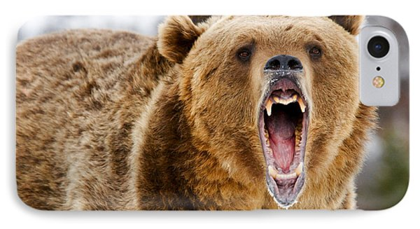 Roaring Grizzly Bear IPhone Case