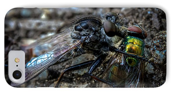 Robber Fly Eating Green Bottle Fly Phone Case by Bob Orsillo