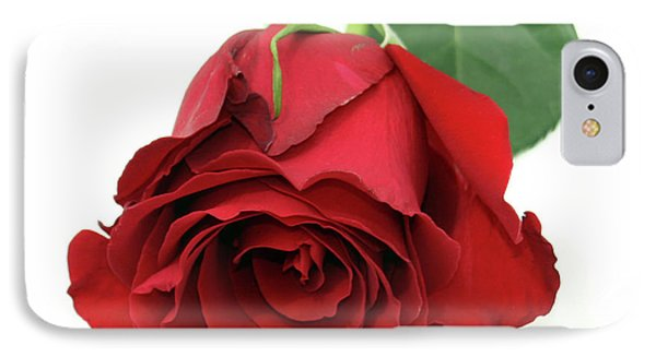 Roberts Single Red Rose IPhone Case by Jane Autry