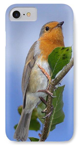 Robin In Eden IPhone Case