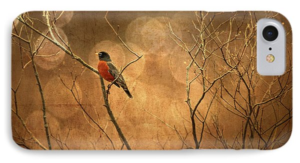 Robin IPhone Case by Lois Bryan
