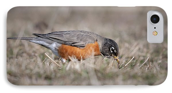 IPhone Case featuring the photograph Robin Pulling Worm by Tyson Smith
