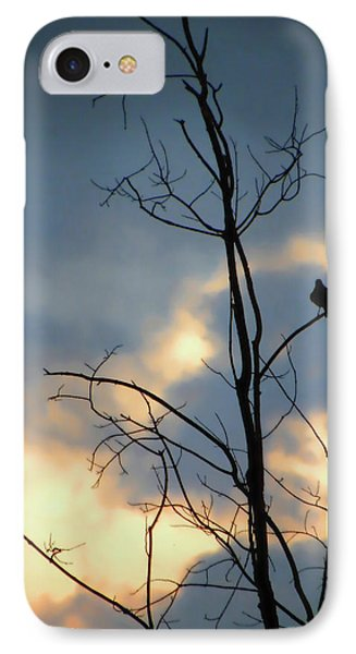 IPhone Case featuring the photograph Robin Watching Sunset After The Storm by Sandi OReilly