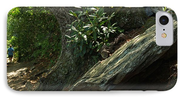 Rocks And Rhododendron At Chimney Rock Phone Case by Anna Lisa Yoder
