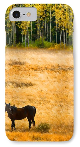 Rocky Mountain Autumn Graze Phone Case by James BO  Insogna