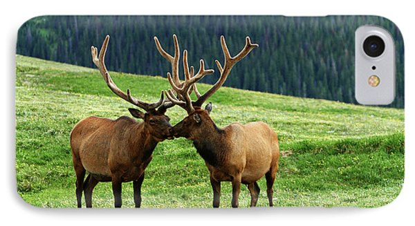 IPhone Case featuring the photograph Rocky Mountain Elk 2 by Marie Leslie