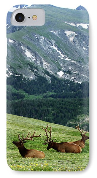 IPhone Case featuring the photograph Rocky Mountain Elk 5 by Marie Leslie