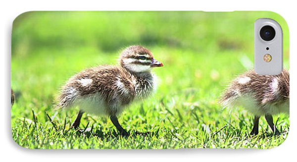 Rogue Duckling, Yanchep National Park IPhone Case by Dave Catley