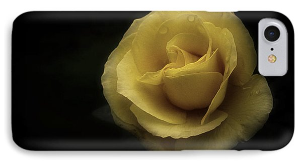 Romantic Yellow Rose 2016 IPhone Case by Richard Cummings