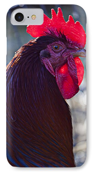 Rooster With Bright Red Comb Phone Case by Garry Gay