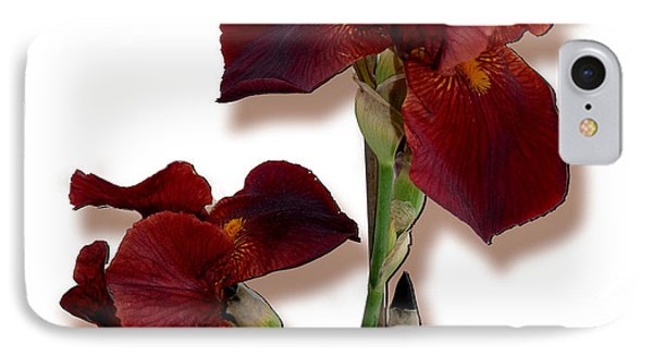 Root Beer Irises IPhone Case by Tara Hutton