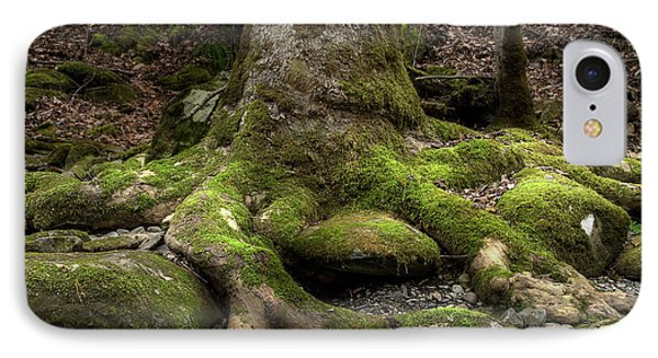 Roots Along The River IPhone Case