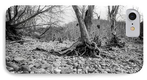 IPhone Case featuring the photograph Roots And Stones by Alan Raasch