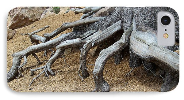 Roots IPhone Case by Ernie Echols