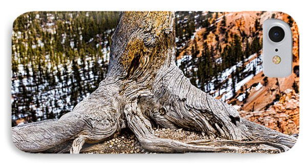 Roots Gripping The Edge Phone Case by Christopher Holmes