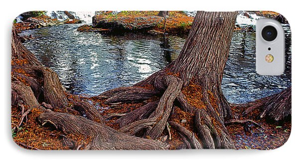 Roots On The River Phone Case by Stephen Anderson