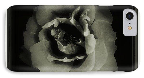 Rose 12 IPhone Case by John Krakora