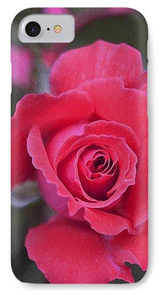 Rose 160 IPhone Case by Pamela Cooper