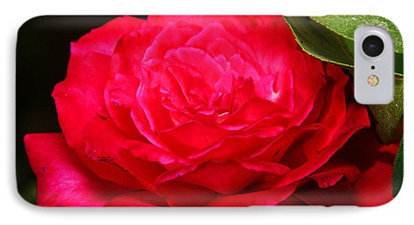 Rose IPhone Case by Anthony Jones