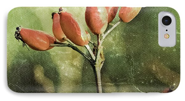 Rose Hips IPhone Case