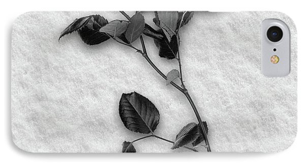 Rose In Snow IPhone Case by Wim Lanclus