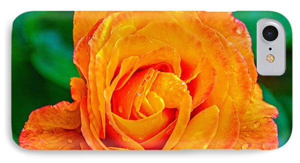 IPhone Case featuring the photograph Rose by Jerry Cahill
