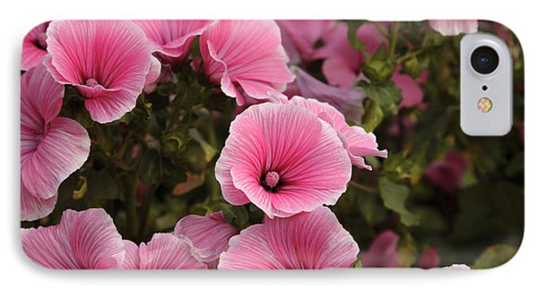 Rose Mallow Flowers IPhone Case by Erin Paul Donovan