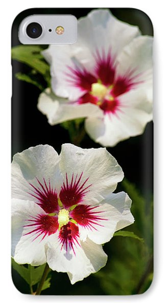 IPhone 7 Case featuring the photograph Rose Of Sharon by Christina Rollo