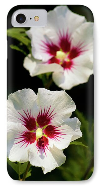 IPhone Case featuring the photograph Rose Of Sharon by Christina Rollo