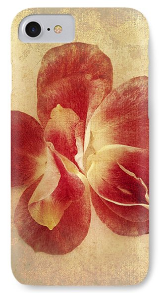 IPhone Case featuring the photograph Rose Petals by Linda Sannuti