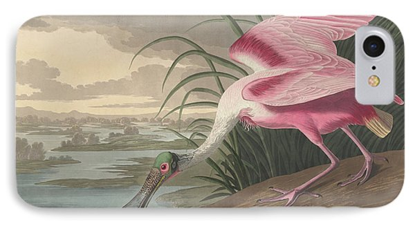 Roseate Spoonbill, 1836  IPhone Case by John James Audubon