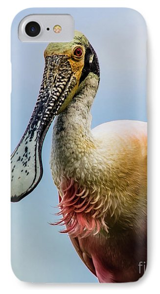 Roseate Spoonbill Close-up IPhone Case by Robert Frederick