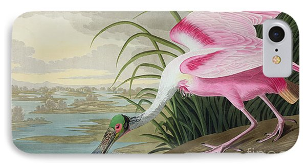 Roseate Spoonbill IPhone Case by John James Audubon