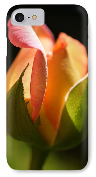 Rosebud IPhone Case by Ralph A  Ledergerber-Photography